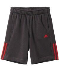 adidas Performance ESSENTIALS Short de sport utility black/vivid red