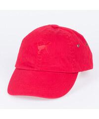 Hype Dad Hat TIGER