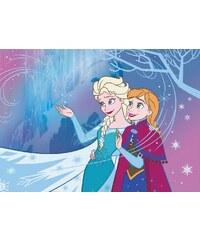 Vopi Dětský koberec Frozen, 133x95 cm - barevný