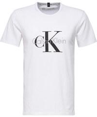 Calvin Klein Pánské triko S/S Crew Neck NM1328A-100