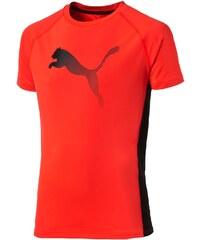 Puma T-Shirt - zweifarbig