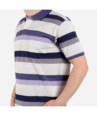 Pánské polo tričko s pruhy Willsoor 5149 670ec36a2f7