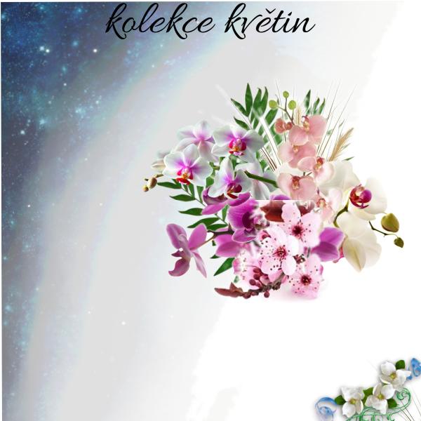 Kolekce květin