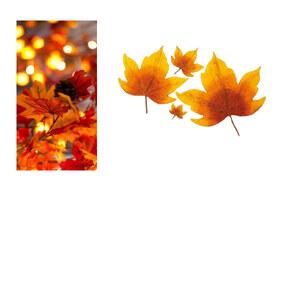 Tenue Podzim sur Ondřej Čech