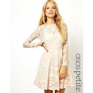 ASOS PETITE Exclusive Premium Applique Mesh Skater Dress