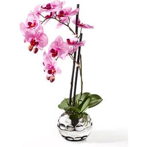 bpc living Orchidée artificielle violet maison - bonprix