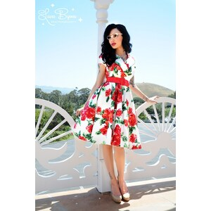 Pinup Couture 50s Birdie Dress in Red Vintage Floral