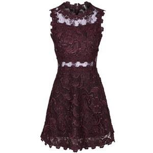 Topshop Skaterkleid aus Premium Spitze - Violett