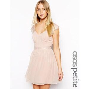 ASOS PETITE - Eyelash - Exklusives Skaterkleid aus Spitze - Rosé 17,14 €