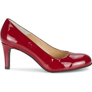 Perlato Chaussures escarpins JULIANO