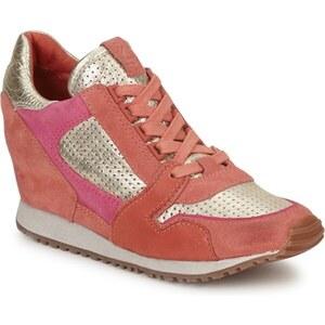 Ash Chaussures DEAN BIS