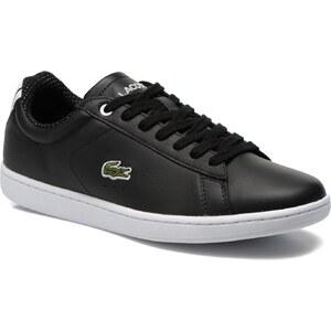 Lacoste - Carnaby Evo 116 1 - Sneaker für Damen / schwarz