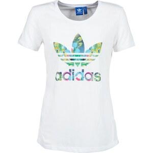 adidas T-shirt BIRD LOGO