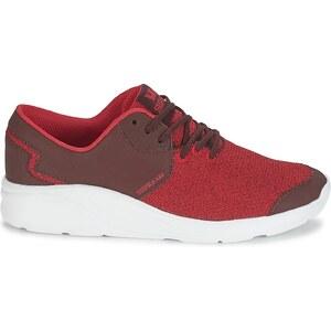 Supra Chaussures NOIZ