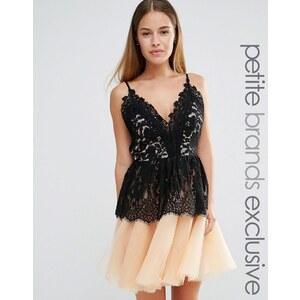 True Decadence Petite - Robe de bal de fin d'année courte avec corsage en dentelle et jupe en tulle - Noir