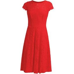 Dorothy Perkins Petite Robe d'été pink
