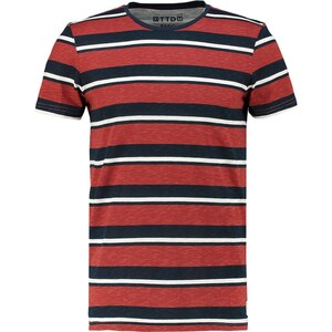 TOM TAILOR DENIM BASIC FIT Tshirt imprimé burned red slate