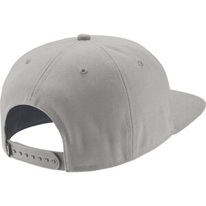 Nike Sb Icon Pro Caps Cap dust/black