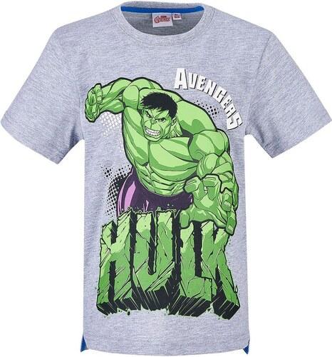 8f6f2abe27 Lamaloli Hulk szürke póló - Glami.hu
