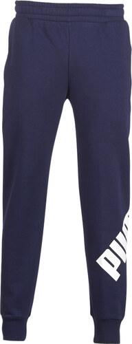 Puma Tepláky Vrchné oblečenie OVERSIZED LOGO PANT Puma - Glami.sk 298227f911b
