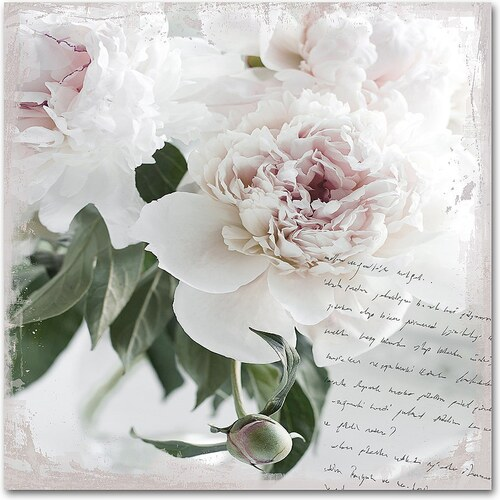 Acrylglasbild »Poesie&Rose«, 50x50cm