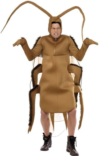 Kostým Brouk