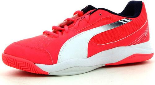 Puma Sálová obuv Dětské Evospeed Indoor 5 3 V Junior Puma - Glami.cz 6e61ac8020