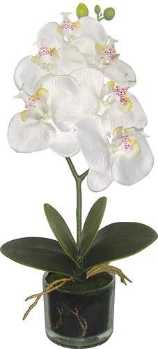 Kunstpflanze »Phalenopsis« weiß inkl. Pflanzgefäß (2 Pfl., H: je 40 cm)