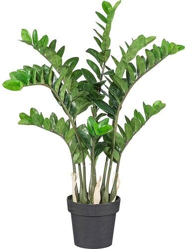 Kunstpflanze »Zamifolia« inkl. Pflanzgefäß (H: 60 cm)