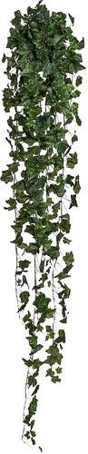 Kunstpflanze »Englischer Efeuhänger« (H: 170 cm)