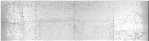 Küchenrückwand - Spritzschutz »profix«, Betonwand, 220x60 cm