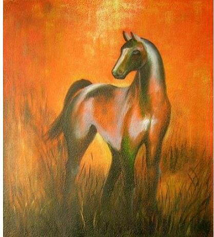 Obraz - Kůň v červánkách