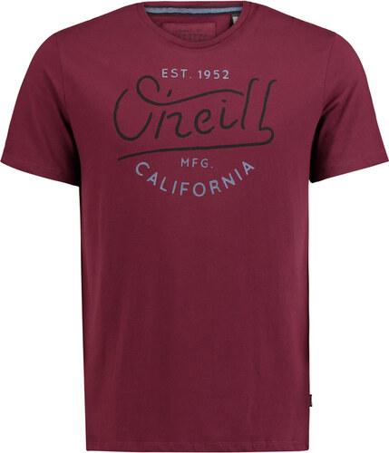 95833f7c60e O Neill Pánské tričko Oneill LM Type Elements T-Shirt - Glami.cz