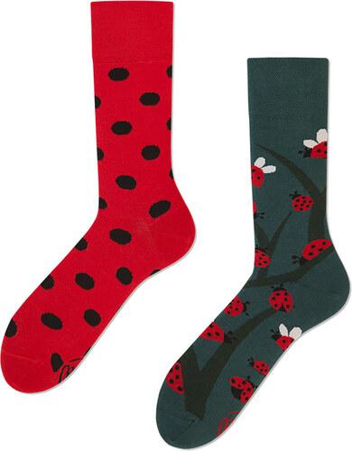 Many Mornings Zeleno-červené ponožky Dots and Bugs - Glami.cz d02bbcba9e