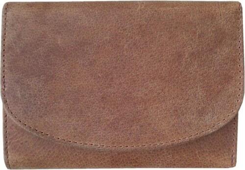 159177f99ae Dámská kožená peněženka EARTH 380