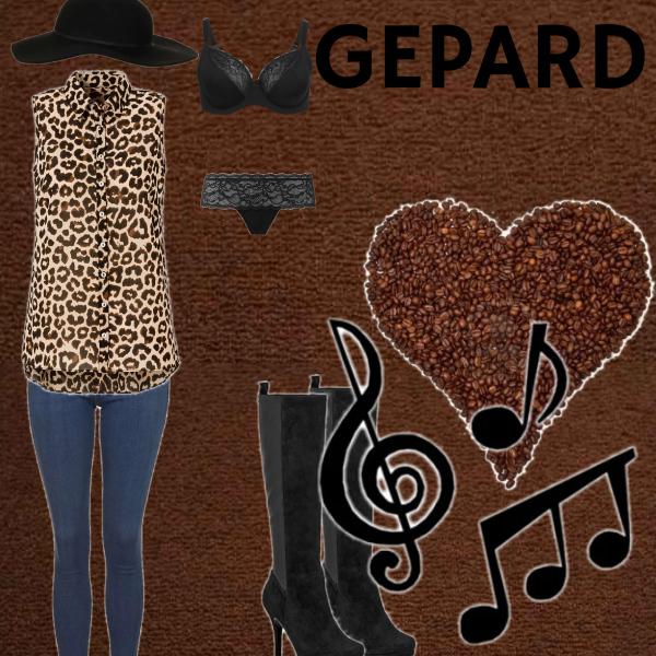Gepardí set