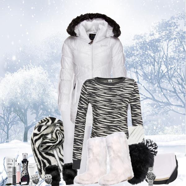 V černobílé do sněhu