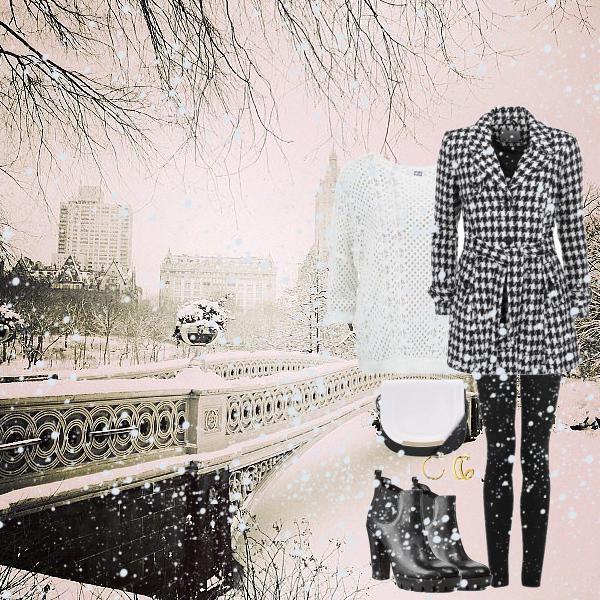 Bílá a černá v zimě