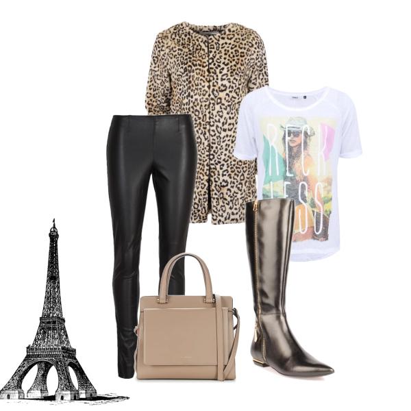 dáma z pařížské ulice