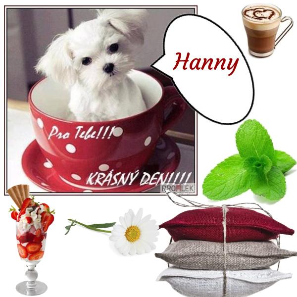 Pro Hanny